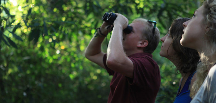 Promotion of birdwatching in the FBiH